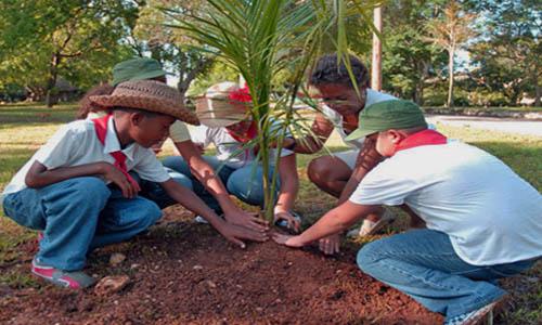 FP Aprovechamiento y Conservación del Medio Natural a Distancia