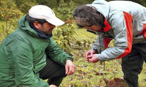 FP Aprovechamiento y Conservación del Medio Natural